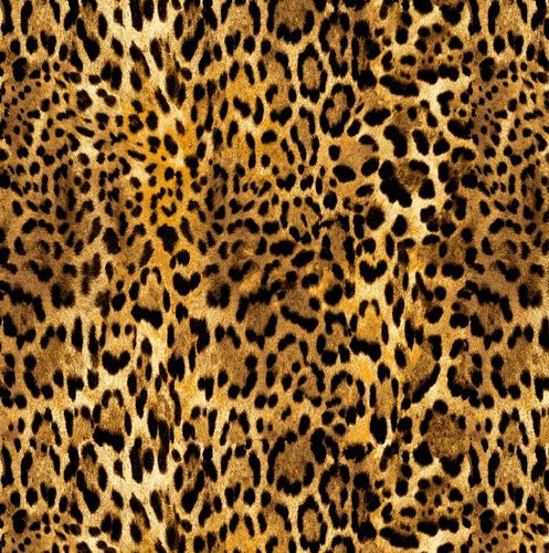 GO WILD. Animal print QUEPARDO.